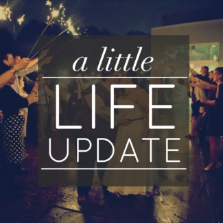 A Little Life Update (Because It's Been So Long!) | Novel Ideas